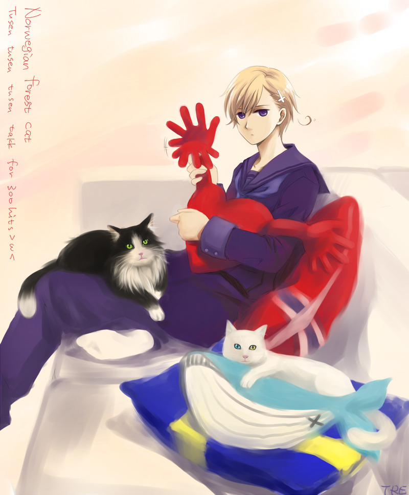 Norway - Axis Powers: Hetalia - Image #894572 - Zerochan Anime Image