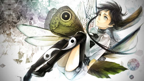 Tags: Anime, Pixiv Id 323382, Insect (Personification), Looking Up, Forehead Mark, Yin Yang (Symbol), Insect Wings
