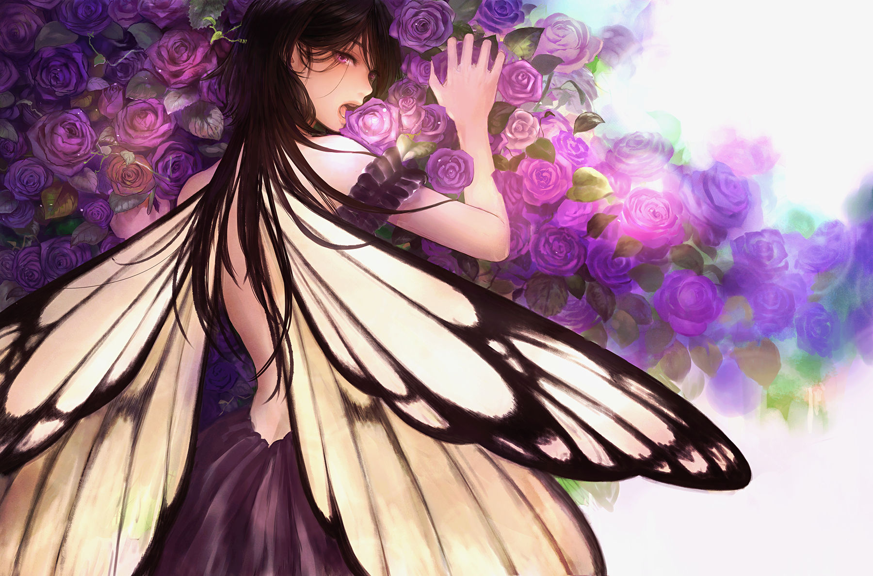 anime girl with butterfly wings wwwpixsharkcom