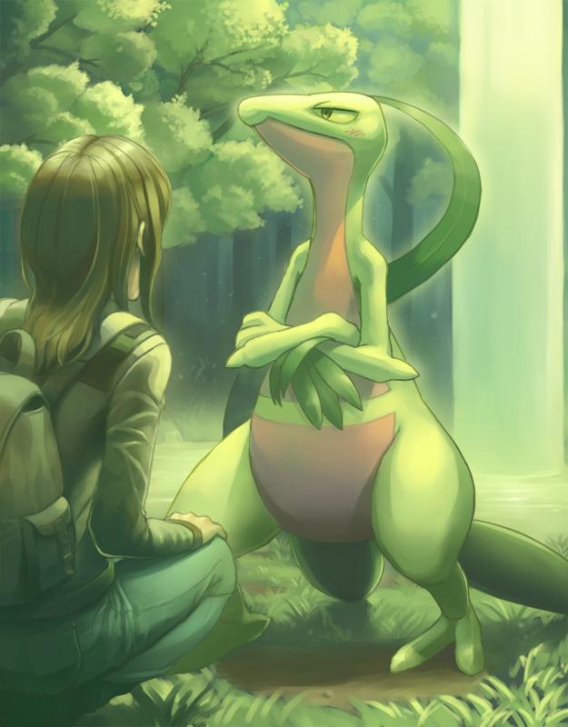 Tags: Anime, Tori Otoko, Pokémon Fushigi no Dungeon, Pokémon, Grovyle, Pokemon Mystery Dungeon