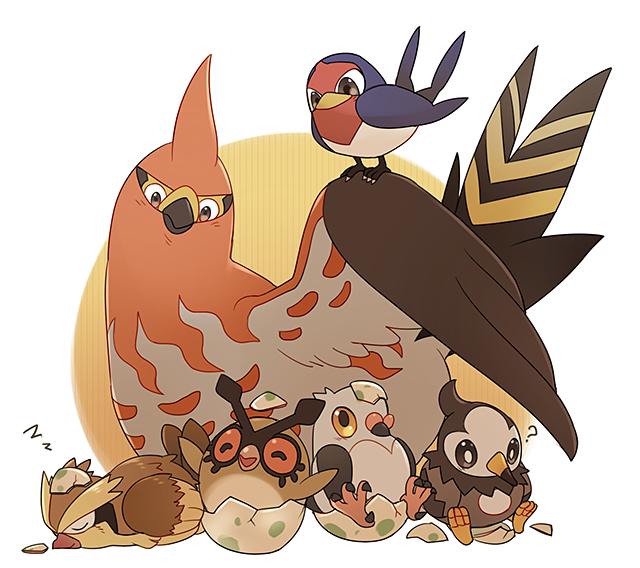Tags: Anime, Epaqjrja, Pokémon, Pidove, Taillow, Pidgey, Talonflame, Starly, Hoothoot, Hatching, Zzz, Fanart, PNG Conversion