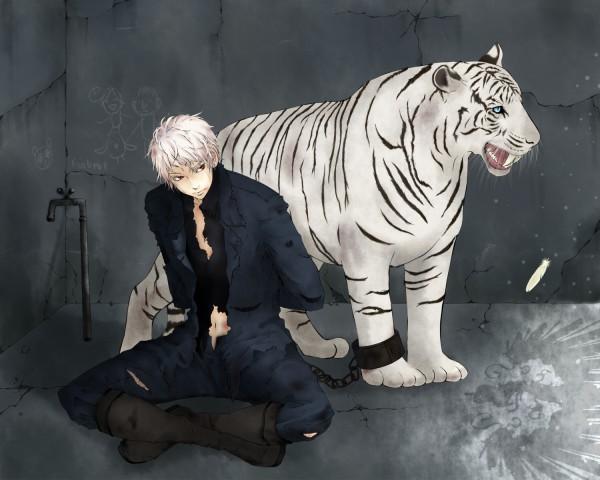 Hetalia Prussia Cat: Hetalia Neko Bad Touch Trio By