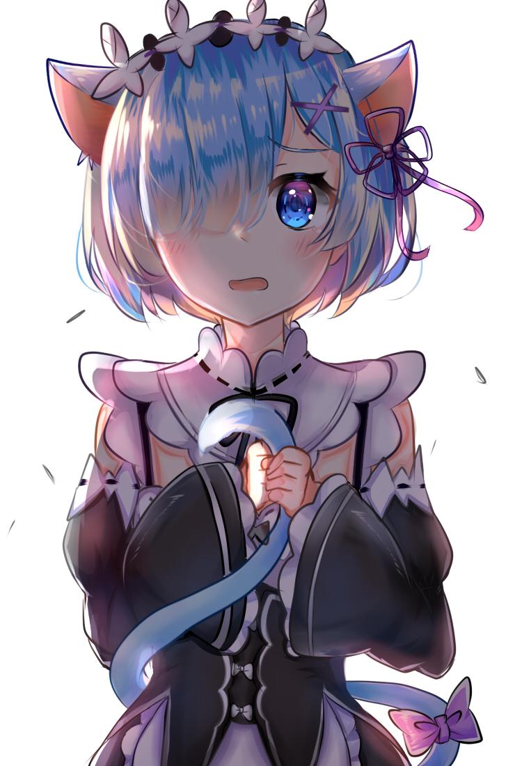 Cat Girl Anime Re Zero