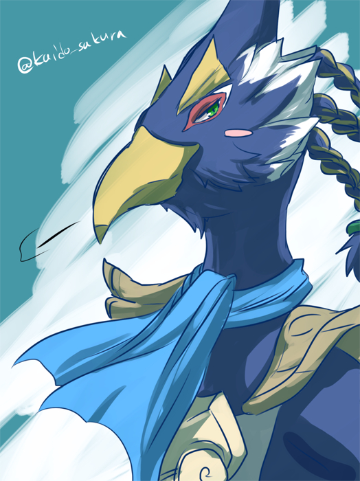 revali breath of the wild zelda no densetsu breath of