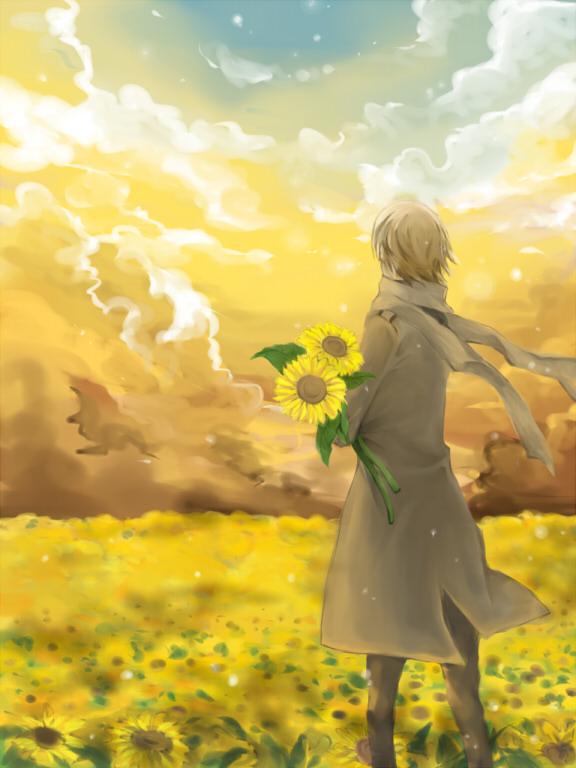 Flower Field Page 3 Of 60 Zerochan Anime Image Board