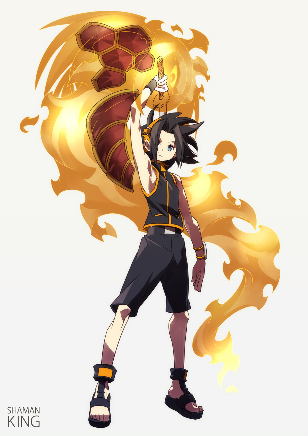 Rod Cohors  Shaman.King.full.1114160