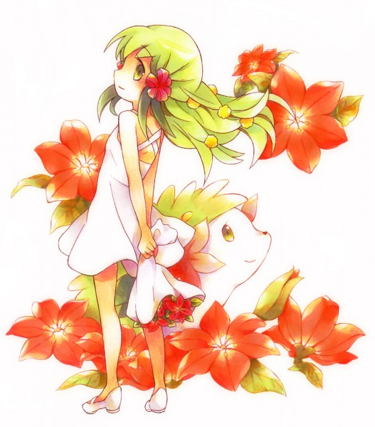 Spring party! Shaymin.600.79084