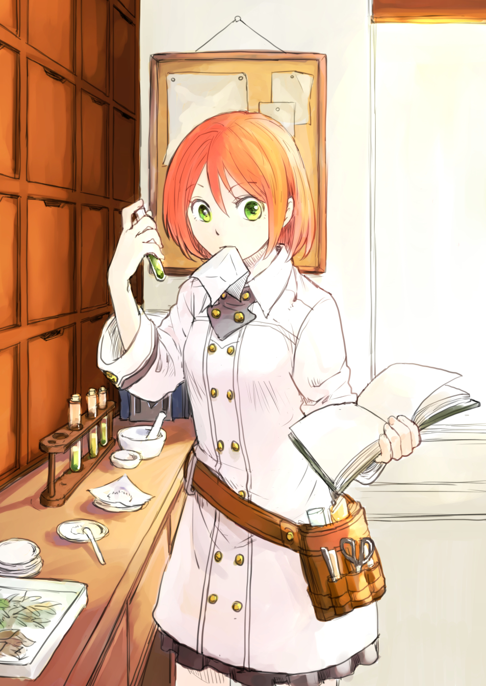 1000  images about Akagami no Shirayuki-hime on Pinterest | Posts ...