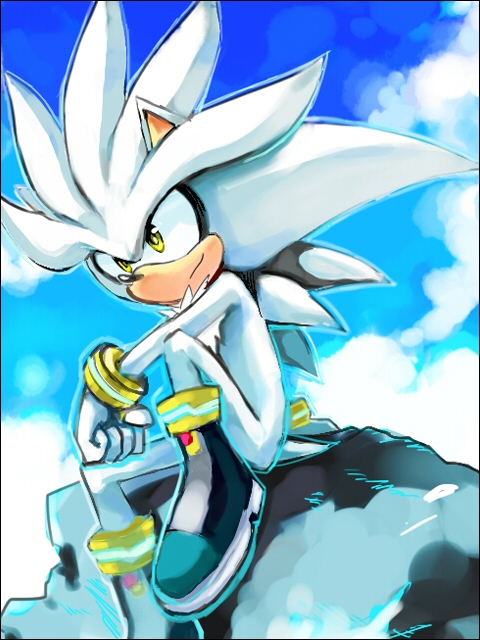 Life's Great Mysteries Silver.the.Hedgehog.full.580045