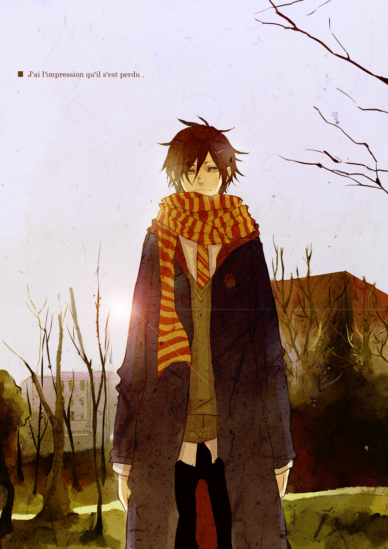 Tags Anime Shi  E6 Ad Bb Harry Potter Sirius Black French Text