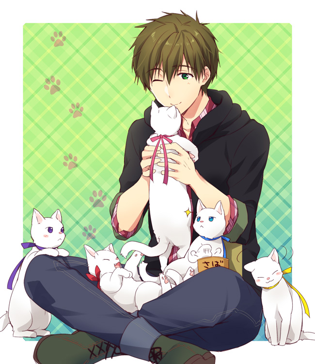 Tags: Anime, Pixiv Id 8015826, Free!, Tachibana Makoto, Pixiv