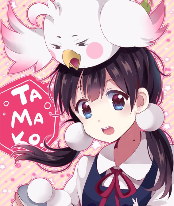 Tags: Anime, Dandelion (Artist), Tamako Market, Dera Mochimazzi, Kitashirakawa Tamako, Fanart