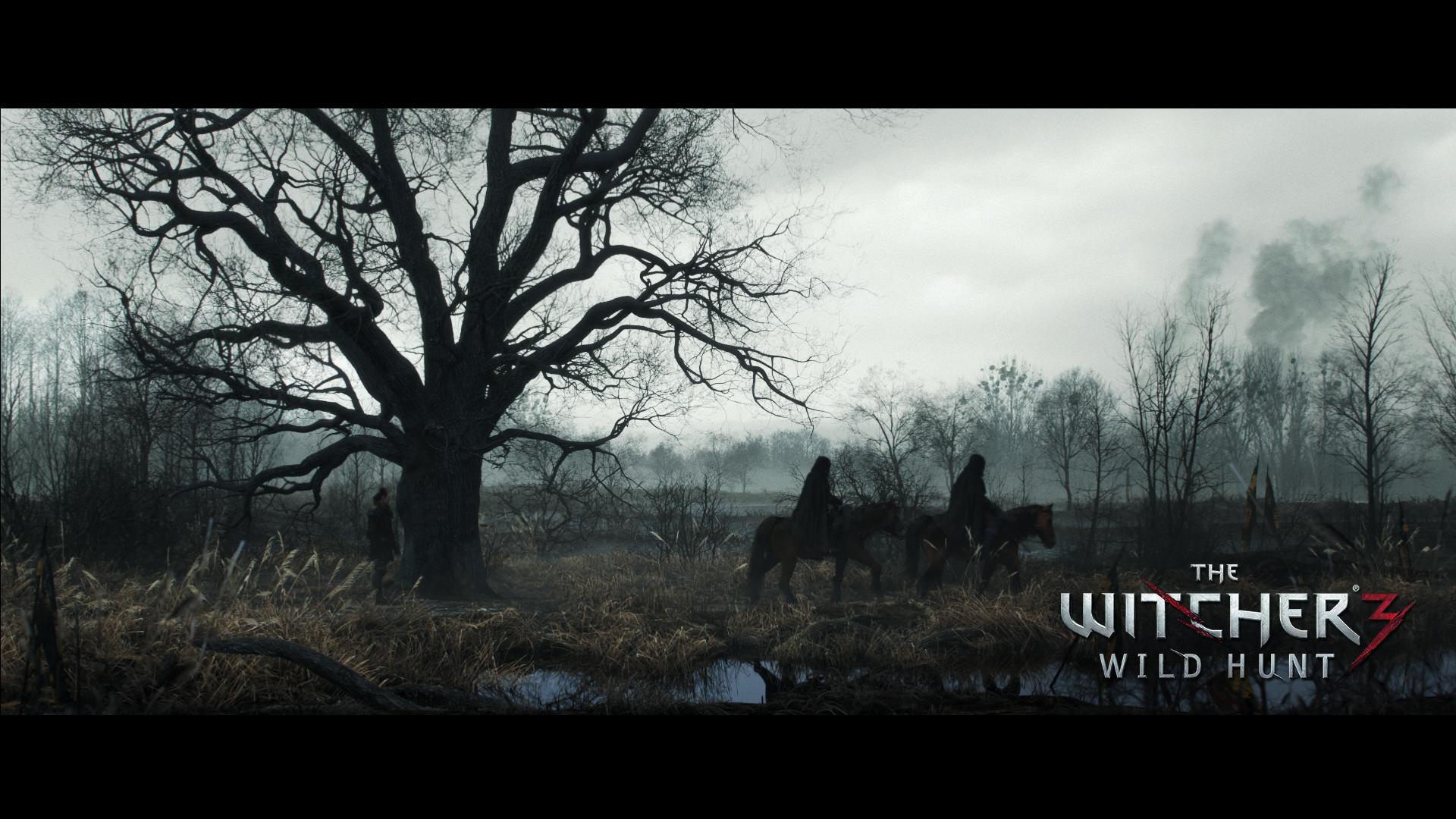 The Witcher 3 Wild Hunt Hd Wallpaper 2178406 Zerochan Anime