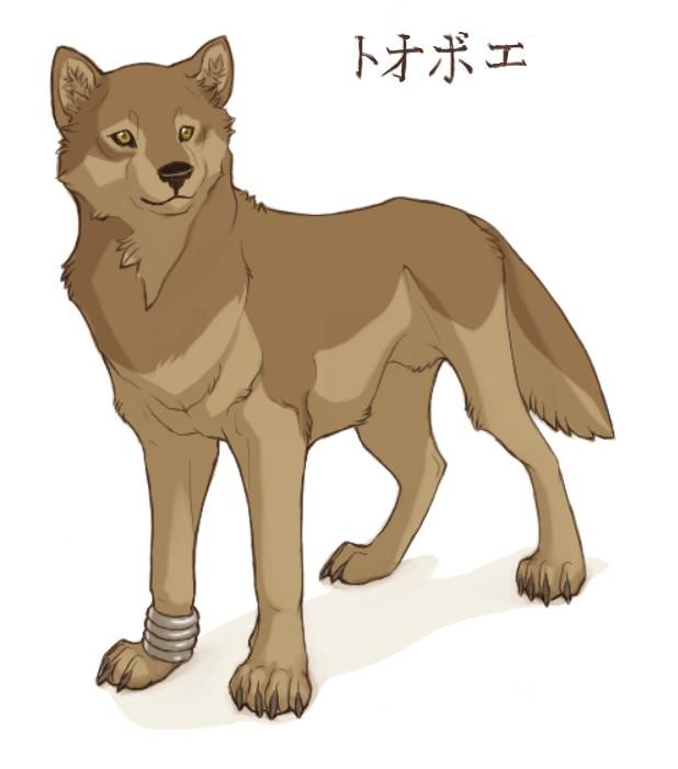 Tags: Anime, Wolf's Rain, Toboe, deviantART