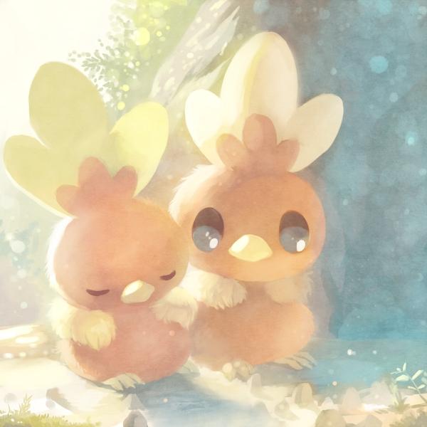 Tags: Anime, Pixiv Id 4521895, Pokémon, Torchic