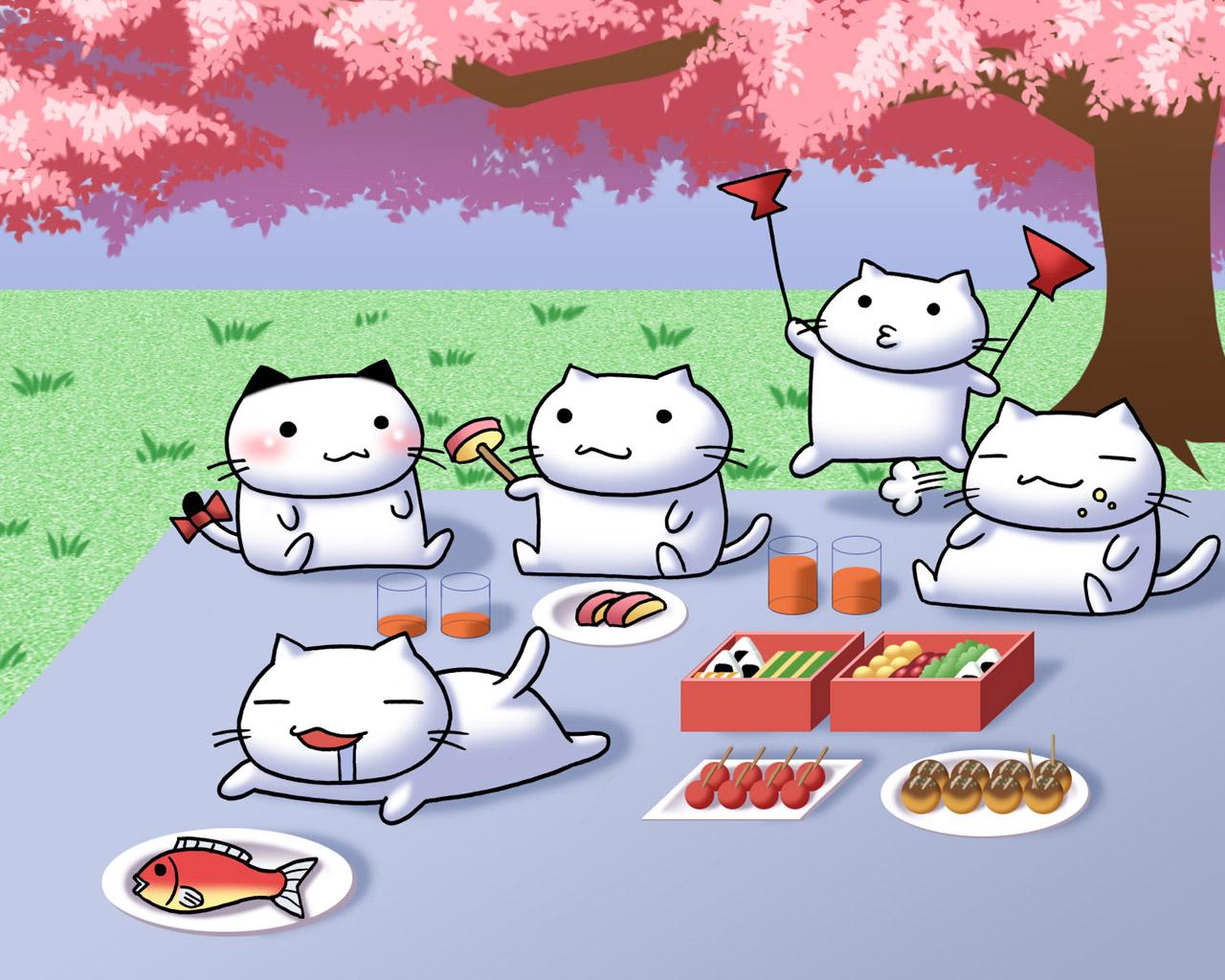 нашем картинка сквиш суши котик изображения