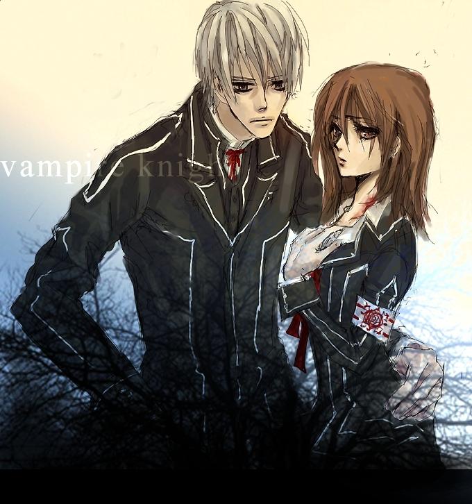 Tags: Anime, Vampire Knight, Yuki Cross, Kiryuu Zero, Fanart