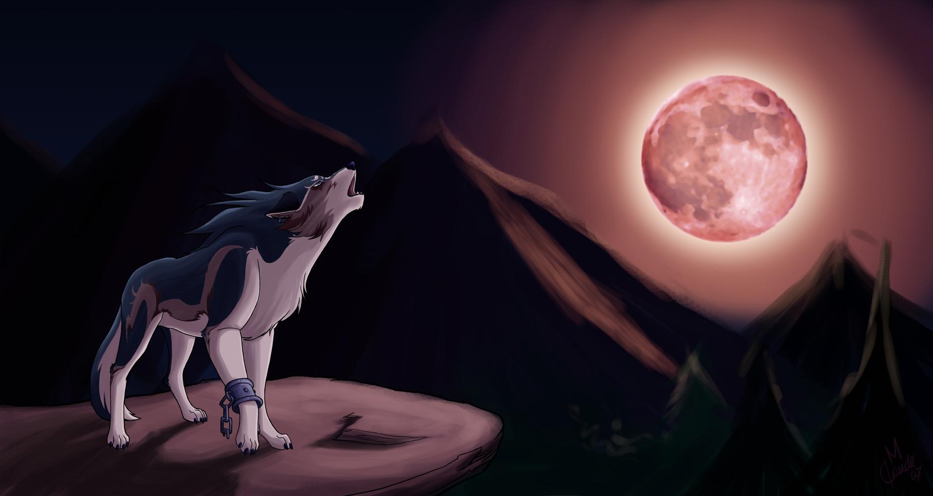 Breath Of The Wild Dark Link >> Link, Wallpaper - Zerochan Anime Image Board