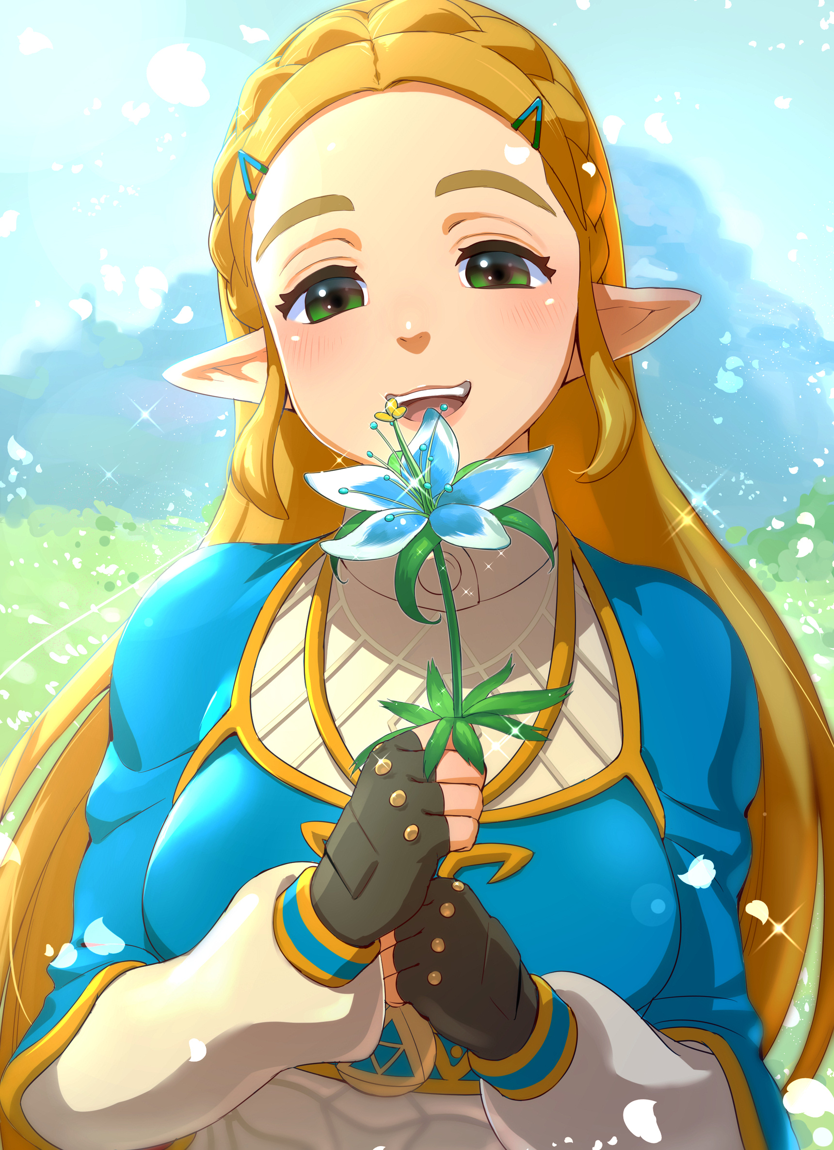 Zelda Breath Of The Wild Zelda No Densetsu Breath Of