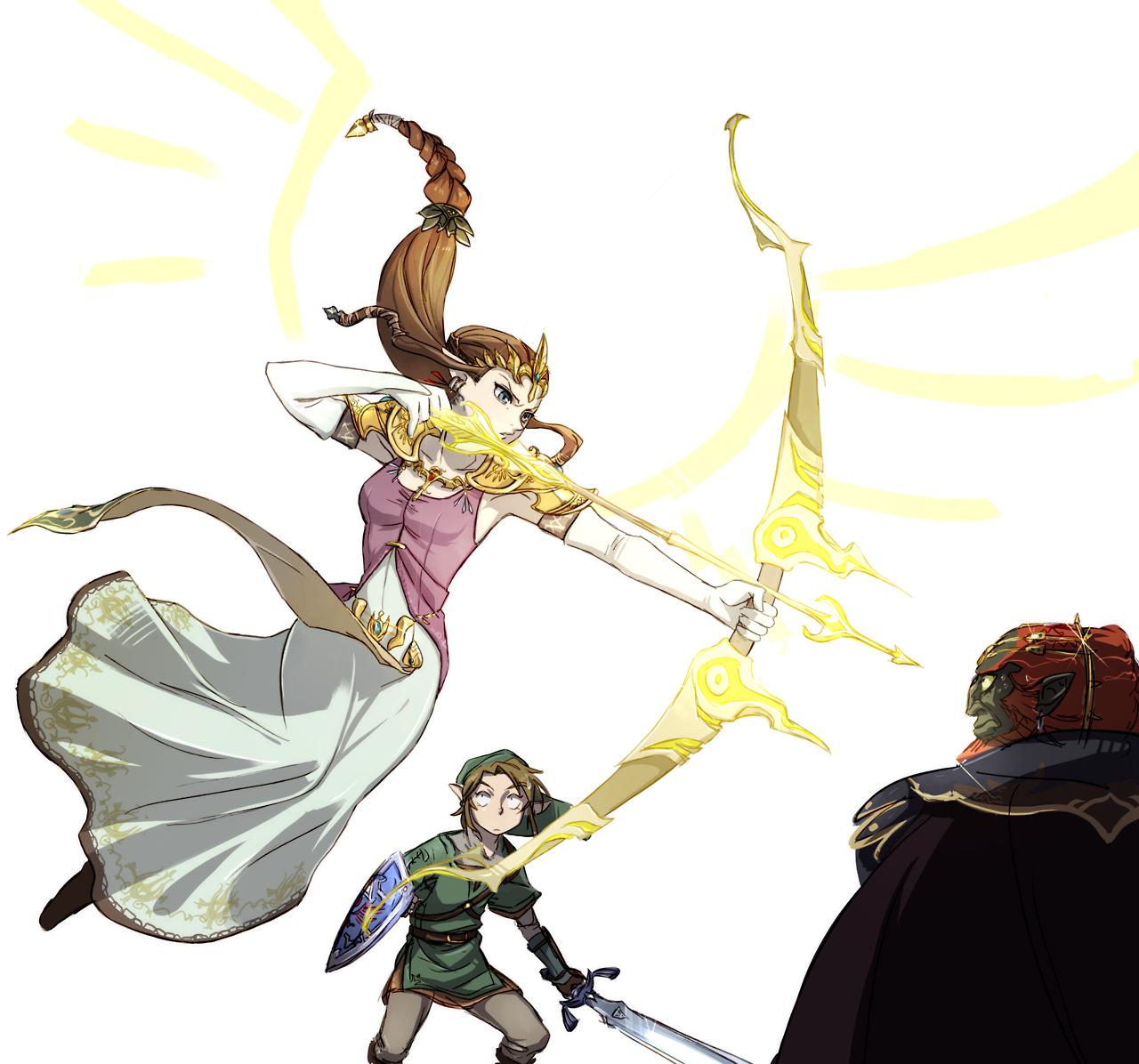 Zelda No Densetsu Twilight Princess Image 1747564
