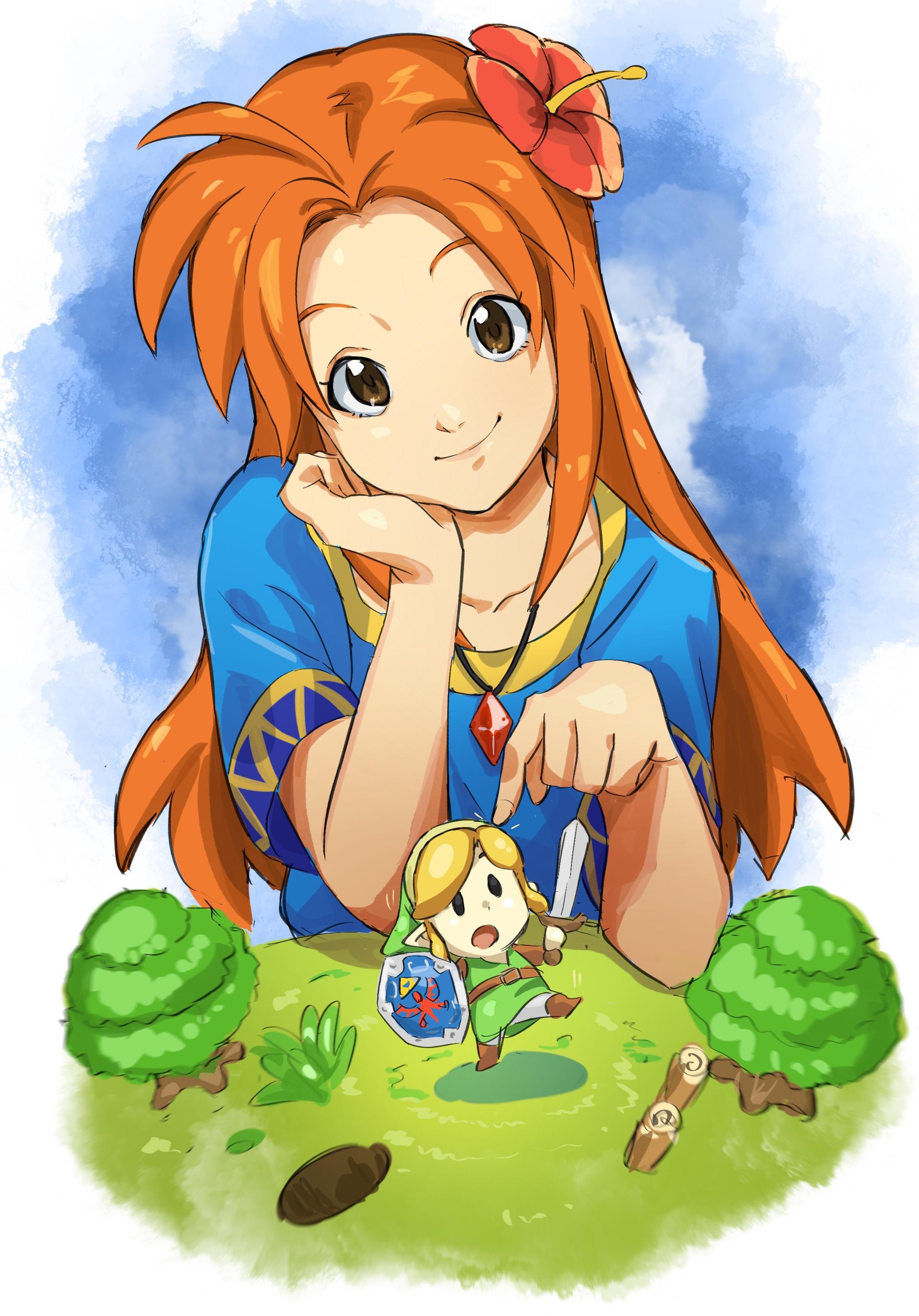 Zelda No Densetsu Yume O Miru Shima The Legend Of Zelda