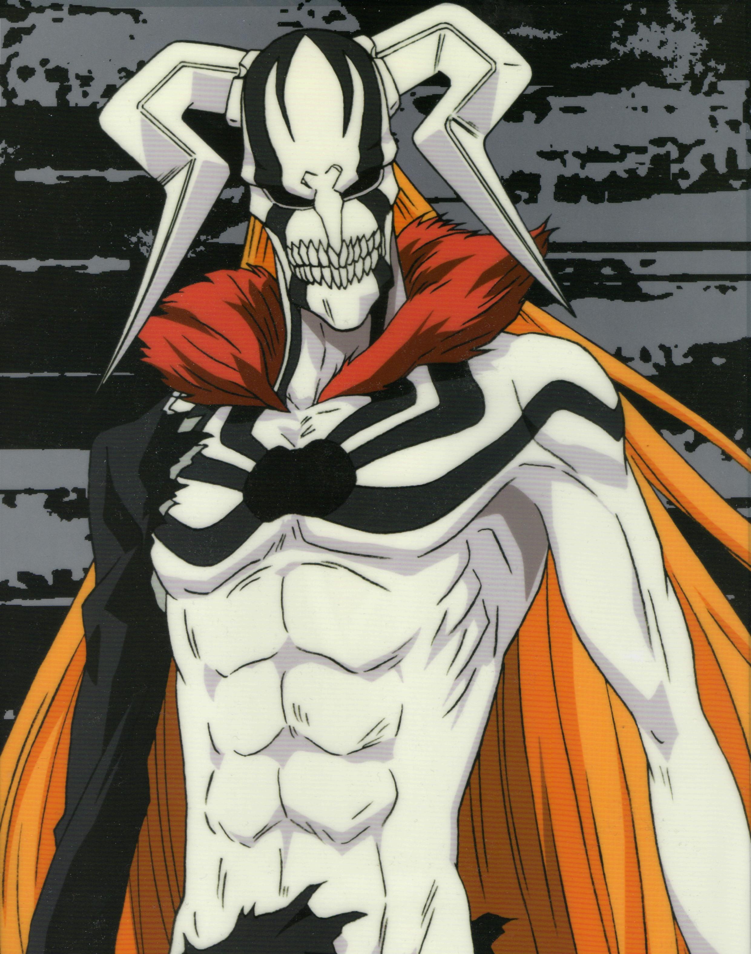 Full Hollow Hollow Ichigo Full